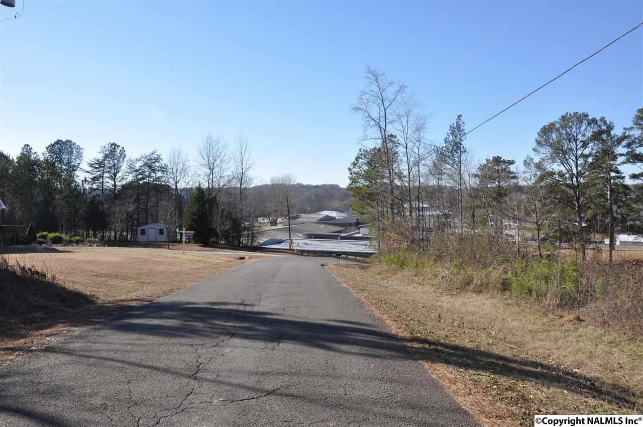 Photo of home for sale at 00 Bright Drive, Blountsville AL