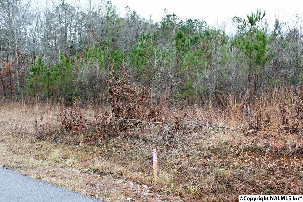 Photo of home for sale at Lot 6 Quail Drive, Centre AL