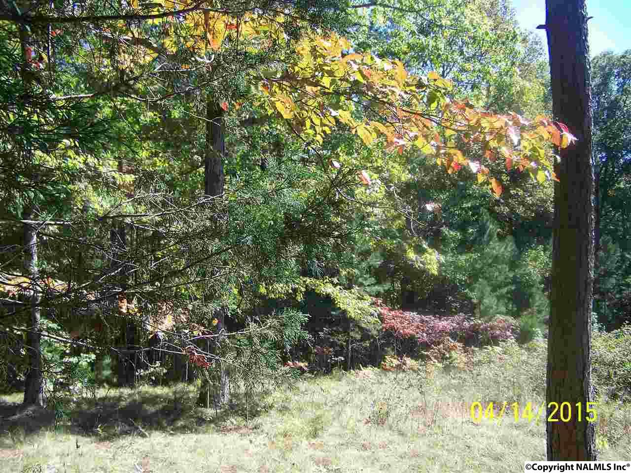 Photo of home for sale at 000 County Road 39, Fackler AL