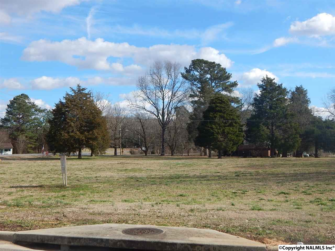 Photo of home for sale at 000 Hwy 67, Priceville AL