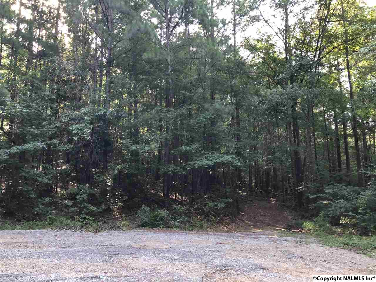 Photo of home for sale at 36 Becky Drive, Gadsden AL