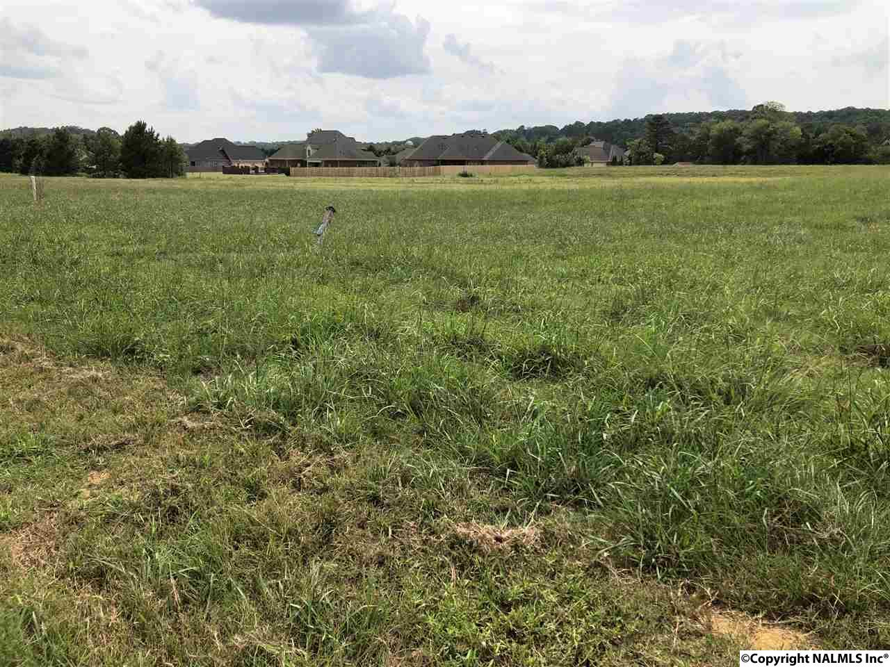 Photo of home for sale at 3421 South Chapel Hill Road, Decatur AL