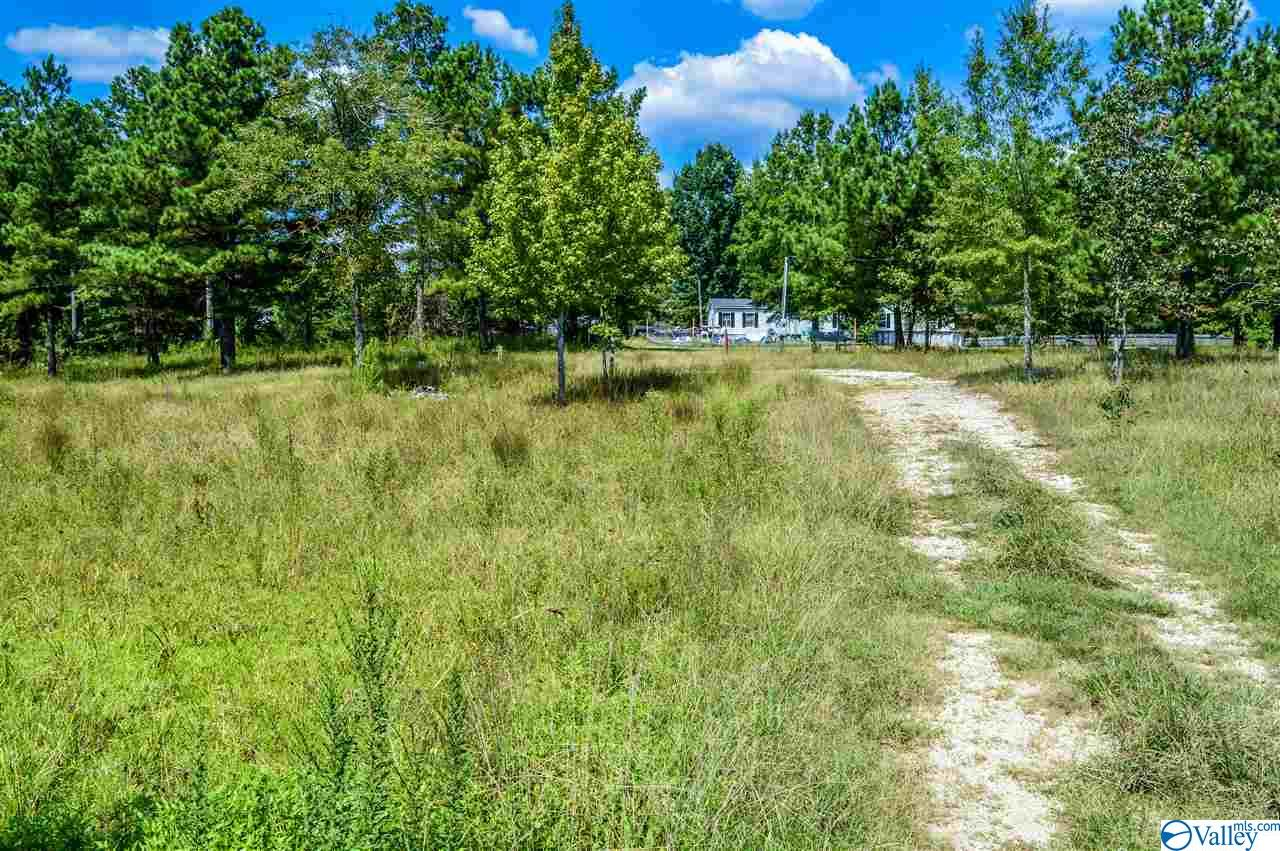 Photo of home for sale at 715 County Road 725, Cedar Bluff AL