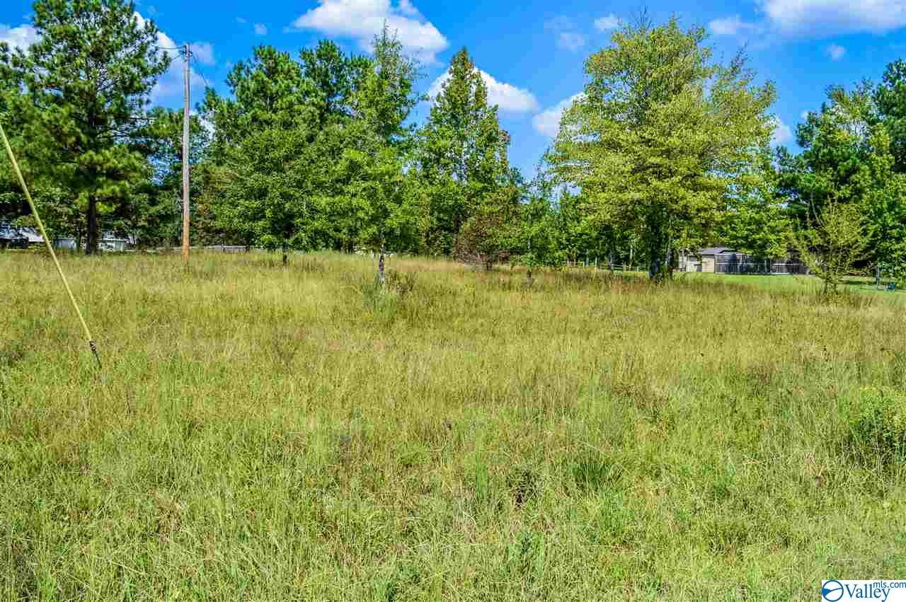 Photo of home for sale at 725 County Road 725, Cedar Bluff AL
