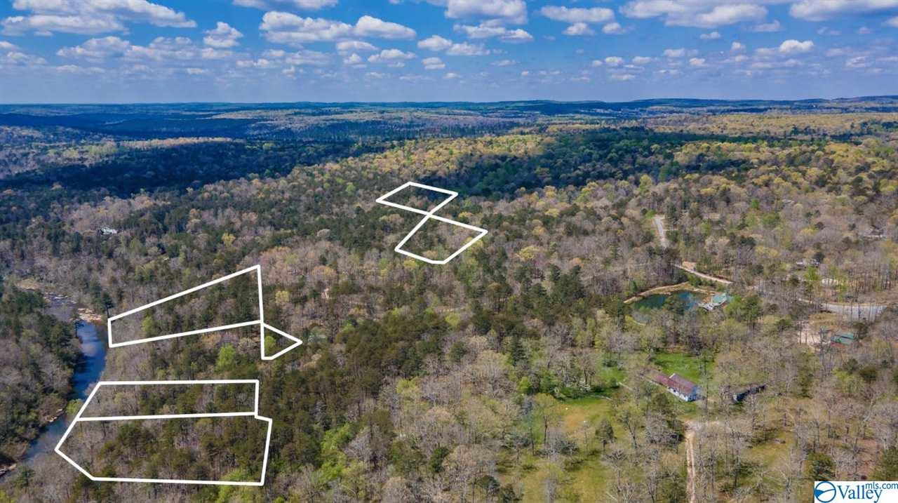 Photo of home for sale at 20 Road 903, Mentone AL