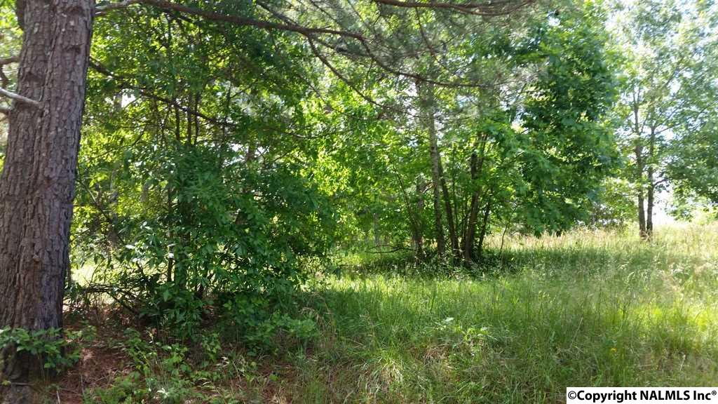 Photo of home for sale at Lot 7 County Road 467, Cedar Bluff AL