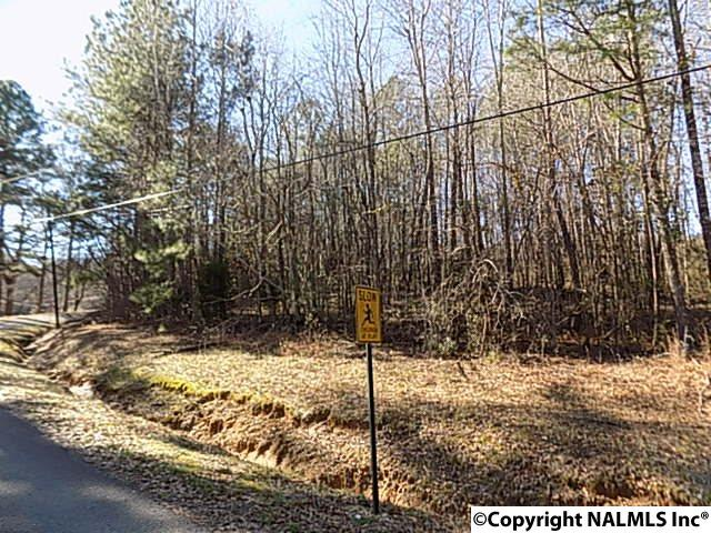 Photo of home for sale at Jackson Avenue, Oneonta AL