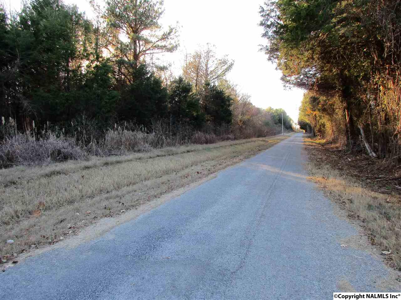 Photo of home for sale at 0 County Road 264, Town Creek AL