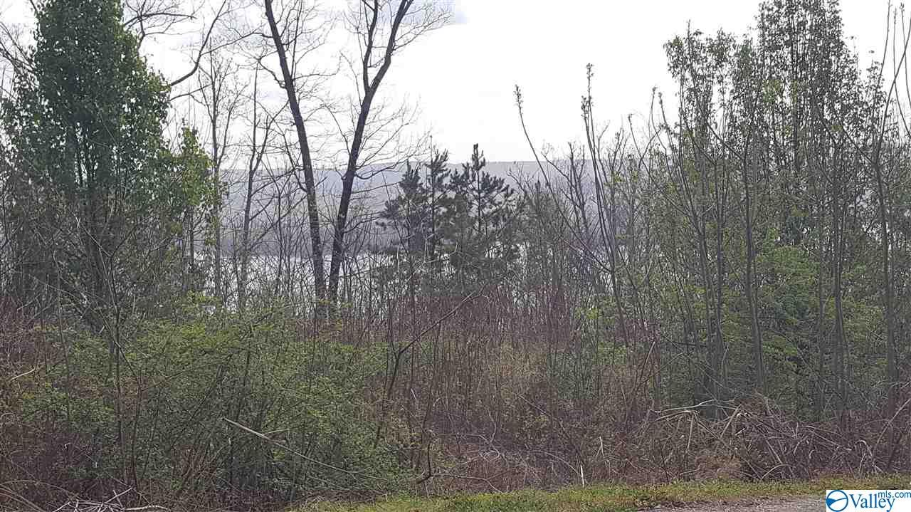 Photo of home for sale at 0 Keene Point Drive, Guntersville AL