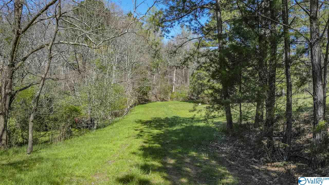 Photo of home for sale at Acreage Highway 11, Fort Payne AL