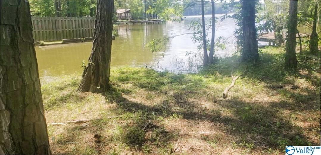 Photo of home for sale at Lot 4 County Road 723, Cedar Bluff AL