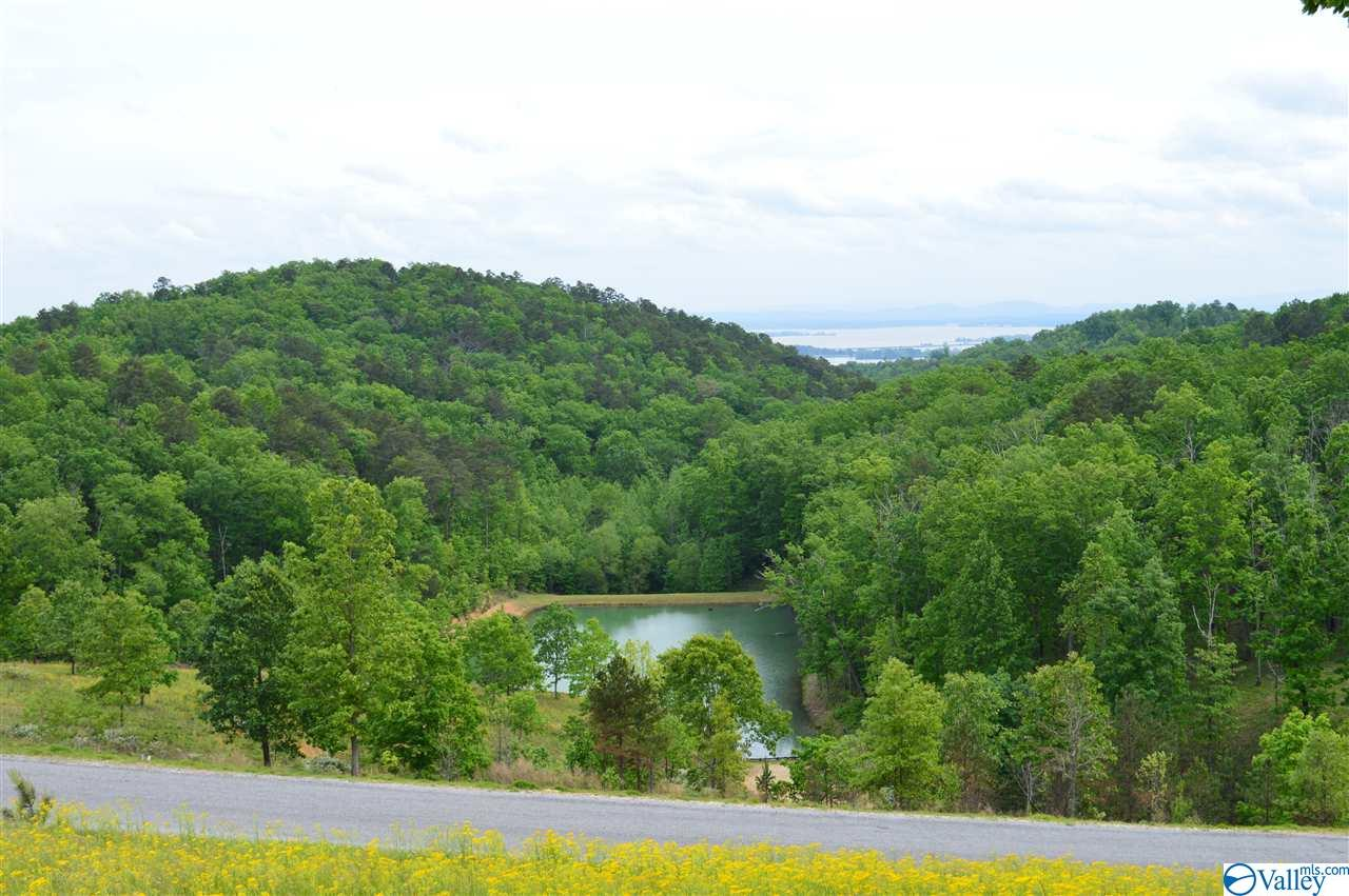 Photo of home for sale at Lot 215 County Road 767, Cedar Bluff AL