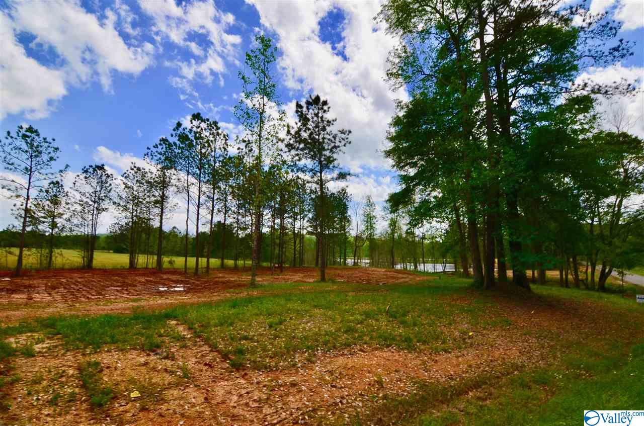 Photo of home for sale at Lot 2 Church Circle, Gadsden AL