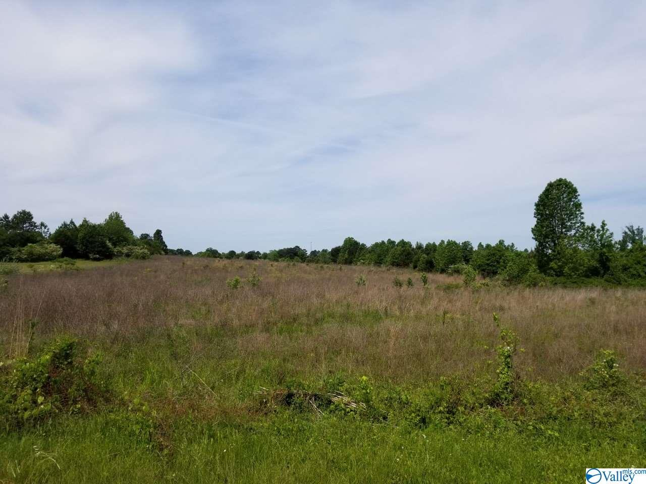 Photo of home for sale at 0 Old Railroad Bed Road, Harvest AL