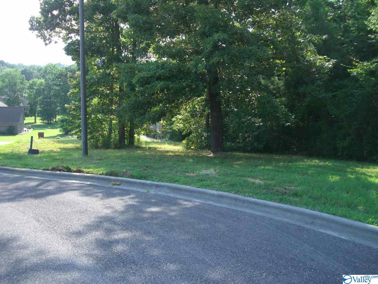 Photo of home for sale at Lot 24 Paradise Place, Scottsboro AL