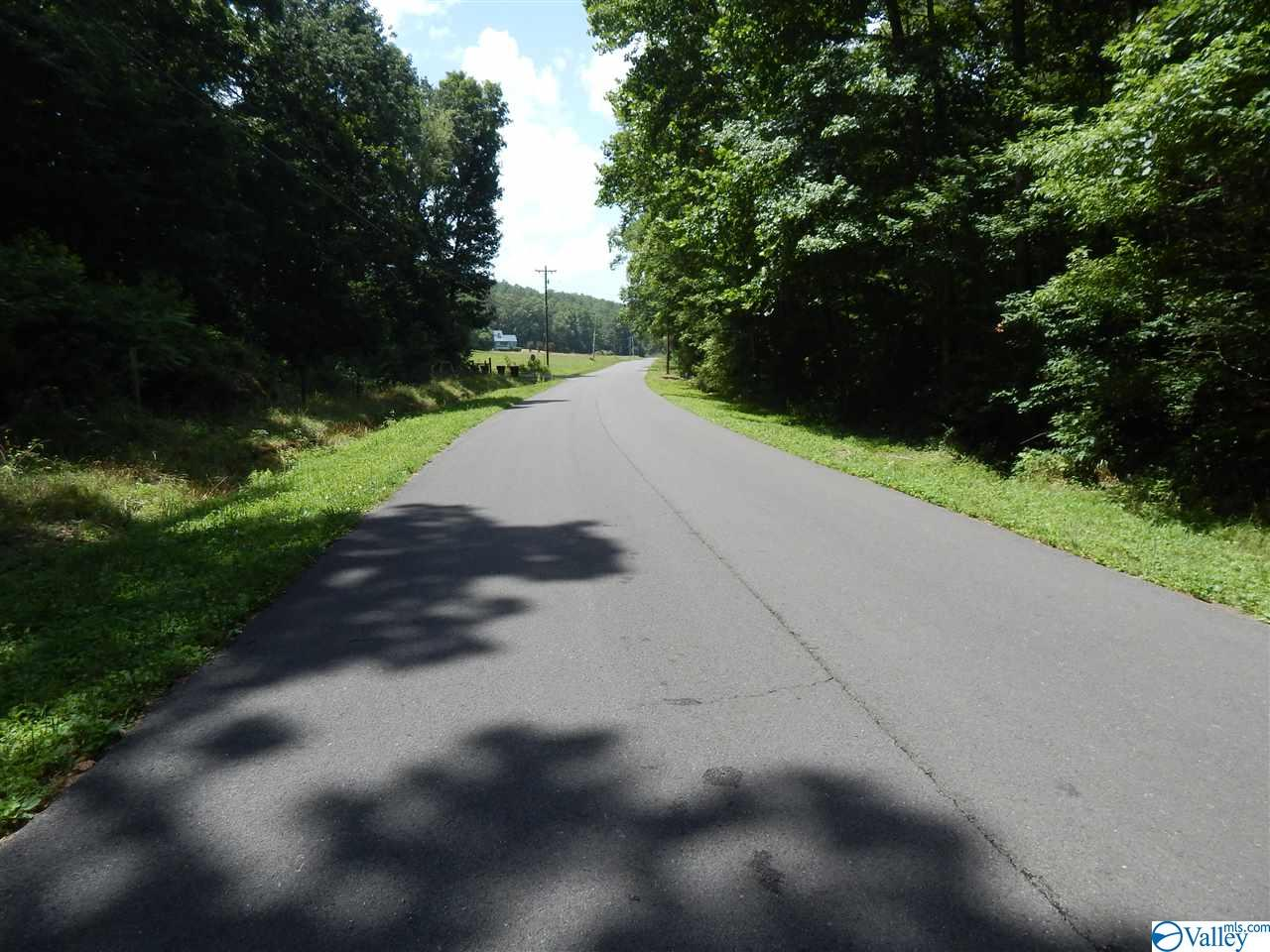 Photo of home for sale at T2 Wooten Gap Road, Fort Payne AL