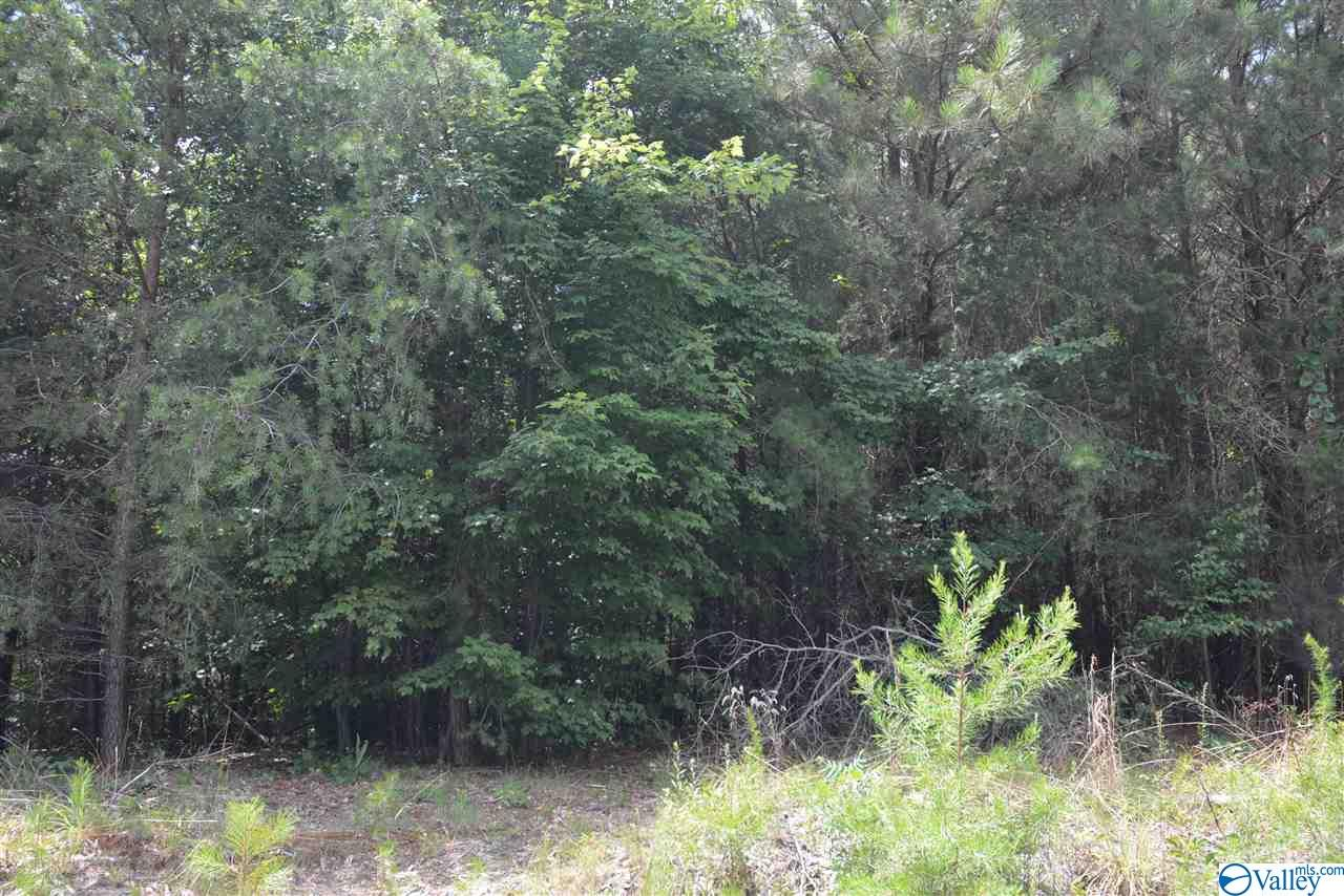 Photo of home for sale at LOT #37 County Road 224, Dutton AL
