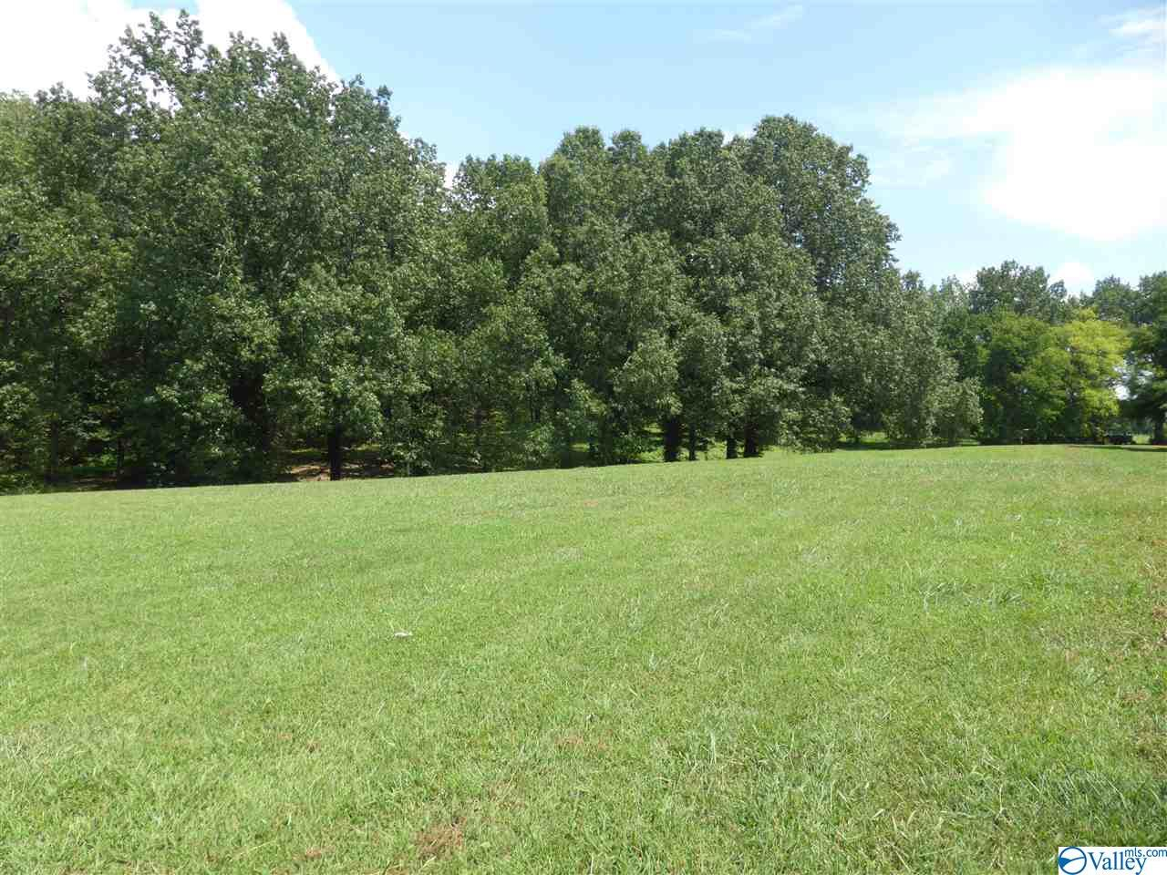 Photo of home for sale at 13206 Saint Andrew Drive, Athens AL