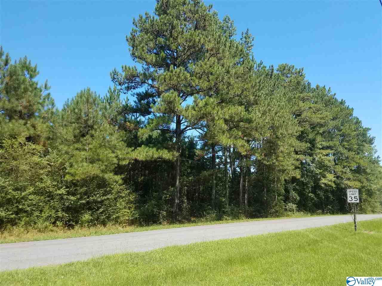 Photo of home for sale at 0 Martling Road, Albertville AL