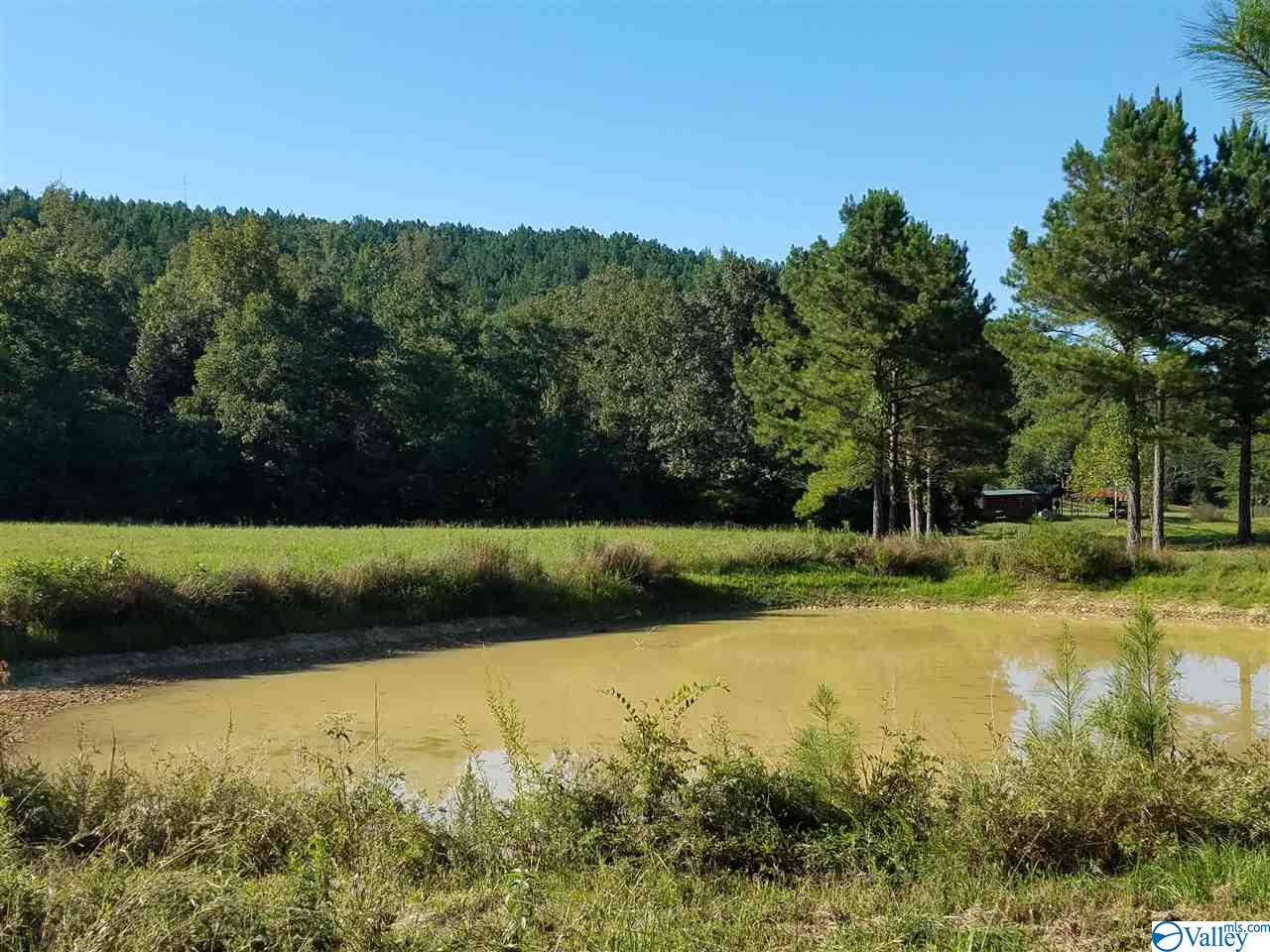 Photo of home for sale at County Road 447, Piedmont AL