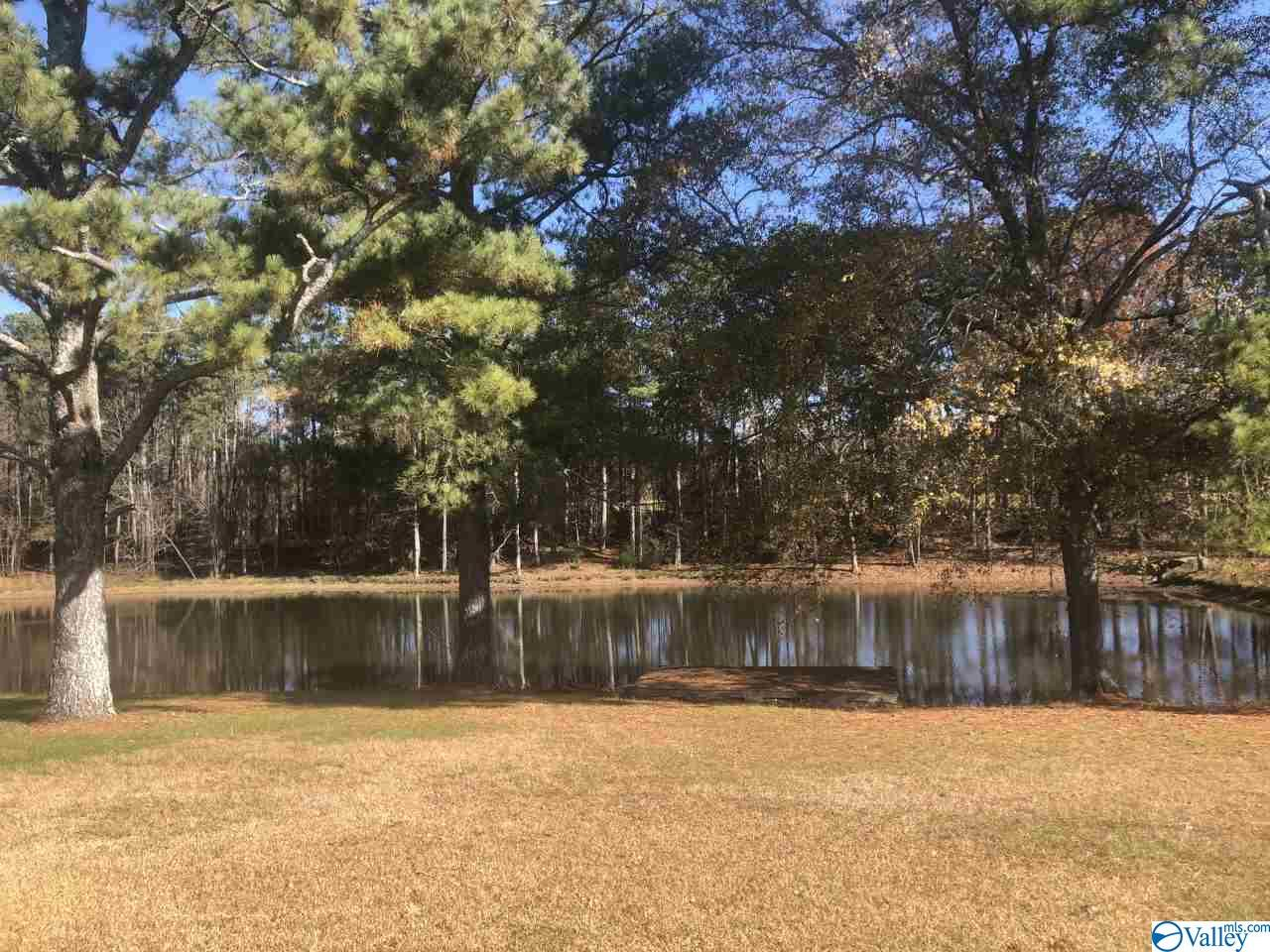 Photo of home for sale at 0 County Road 1866, Arab AL