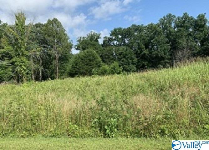Photo of home for sale at 000 Hillview Drive, Rogersville AL