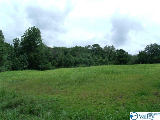Photo of home for sale at 81 ACRES Old Mill Road, Blountsville AL