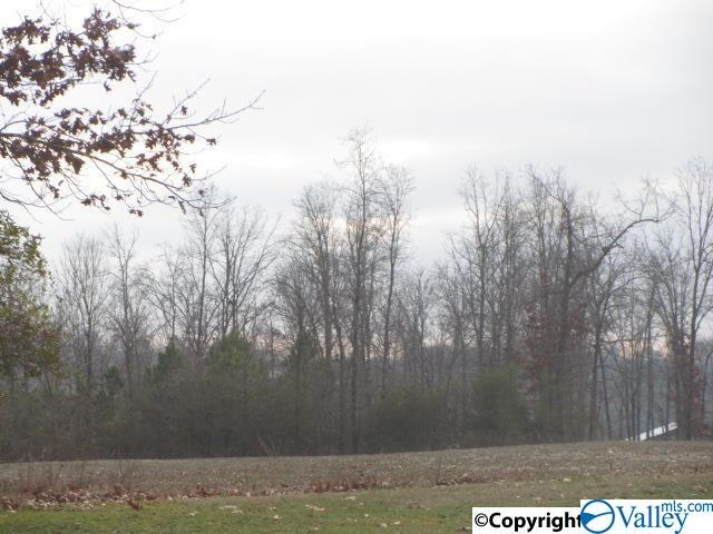 Photo of home for sale at Chavies Road, Rainsville AL