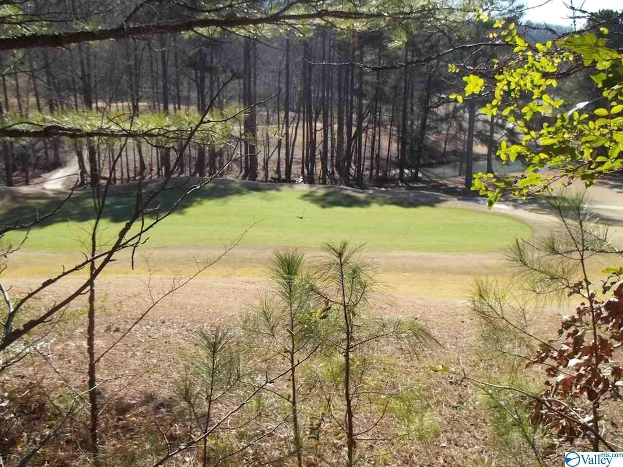 Photo of home for sale at Lots 89/90 Rocky Ridge Road, Union Grove AL