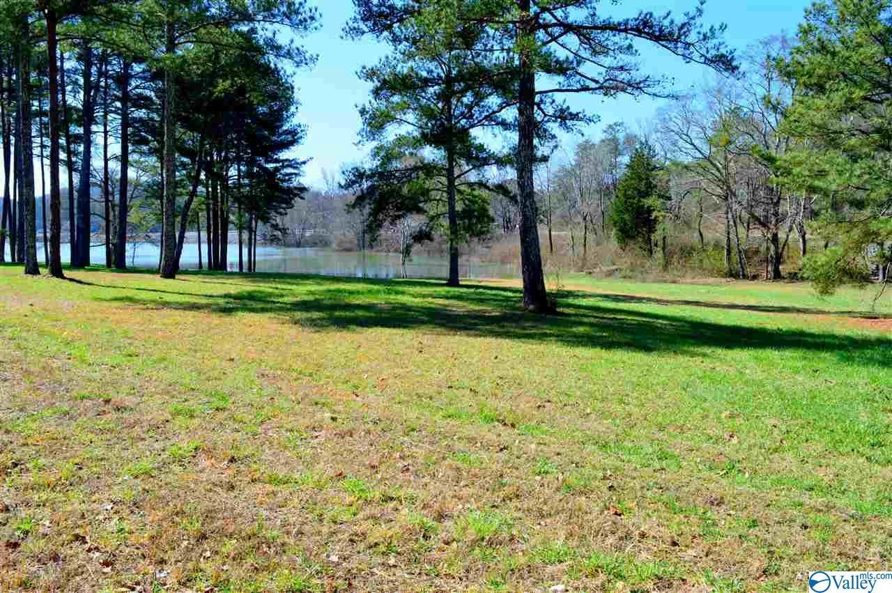 Photo of home for sale at Lot 1 Paradise Ridge Road, Leesburg AL