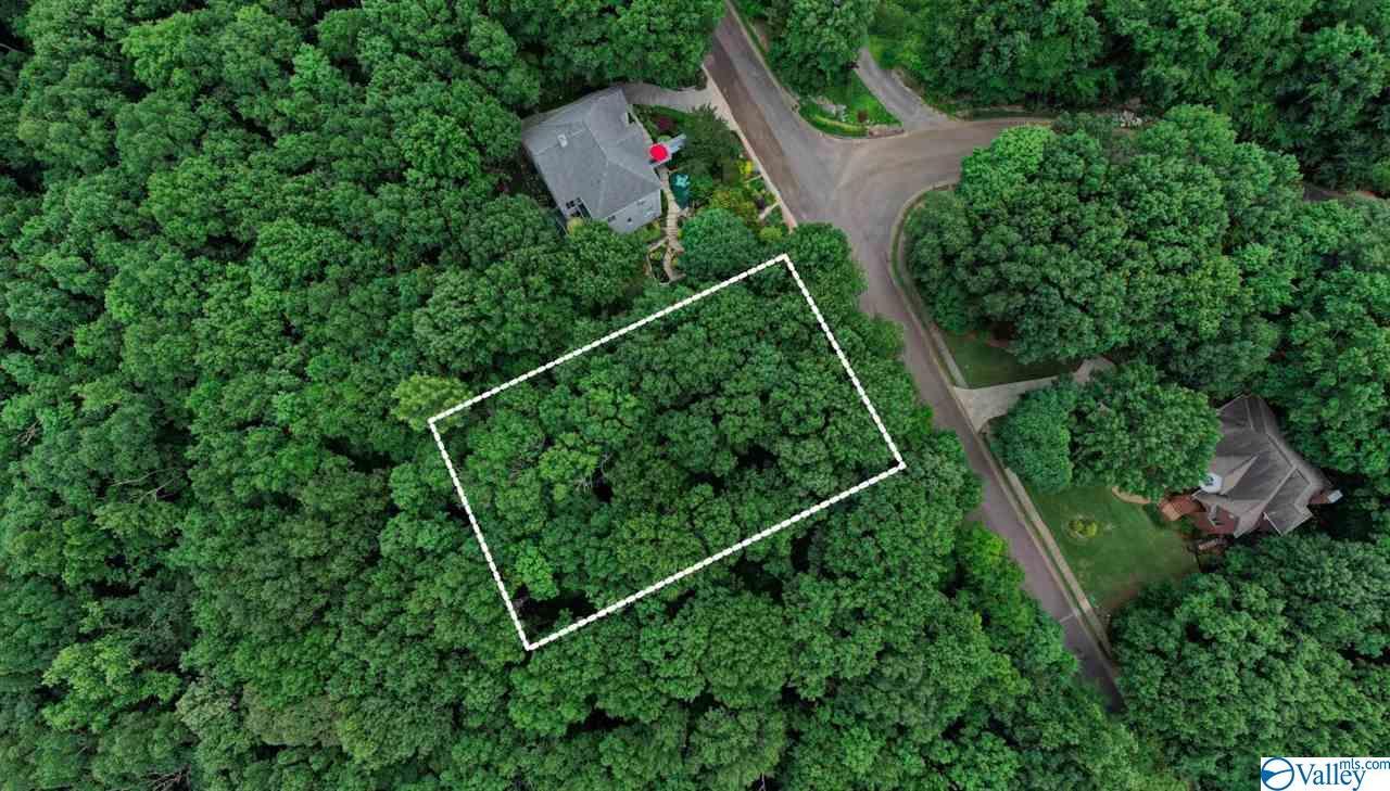 Photo of home for sale at 40 Darlington Road, Huntsville AL