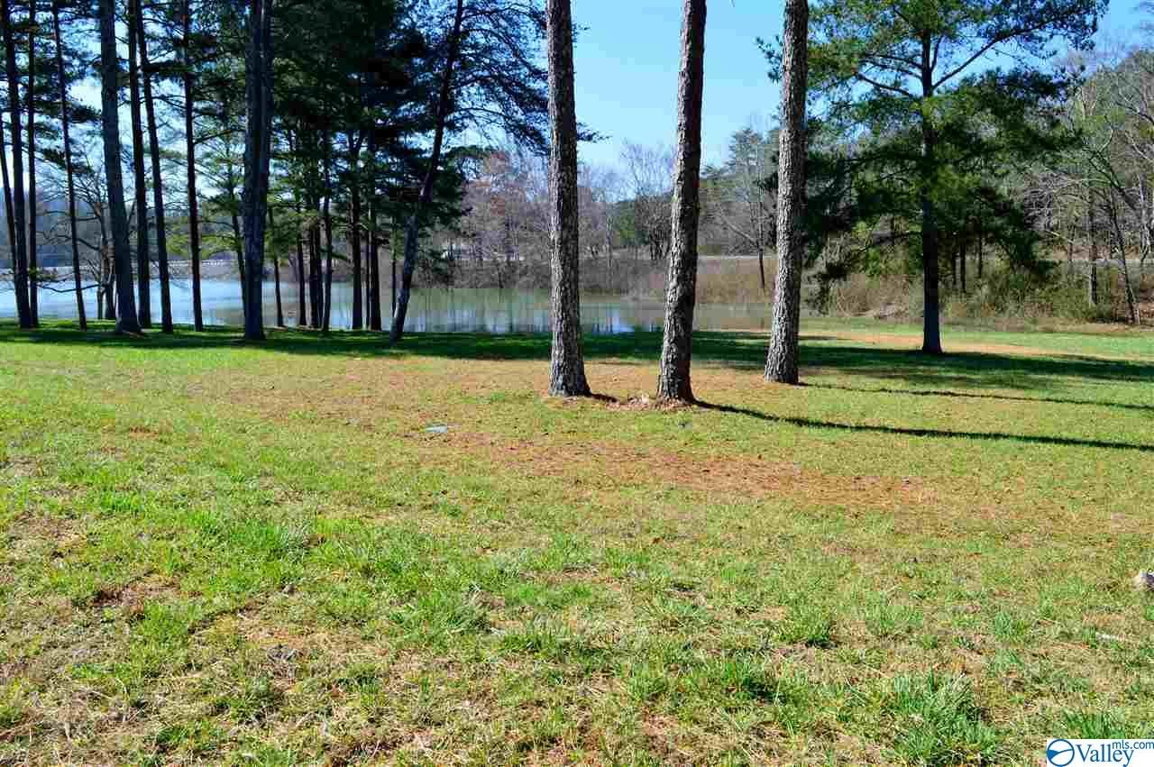 Photo of home for sale at Lot 2 Paradise Ridge Road, Leesburg AL