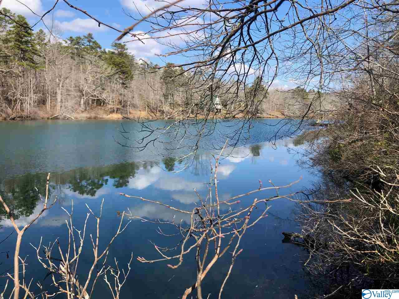 Photo of home for sale at 13040 County Road 103, Mentone AL