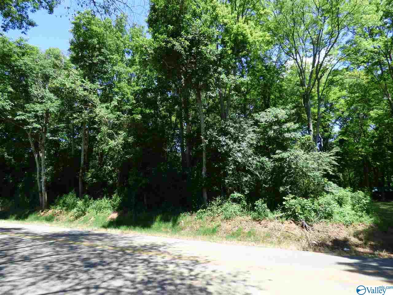 Photo of home for sale at L14 County Road 91, Rogersville AL