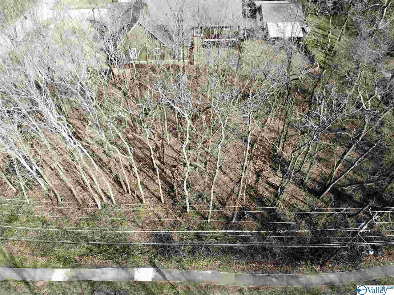 Photo of home for sale at A & B Monte Sano Blvd, Huntsville AL