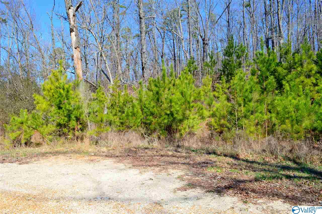Photo of home for sale at Lot 9 Paradise Ridge Road, Leesburg AL