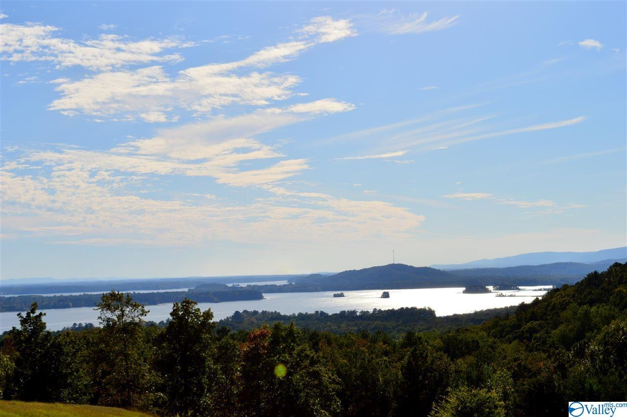 Photo of home for sale at Lot 292 County Road 767, Cedar Bluff AL