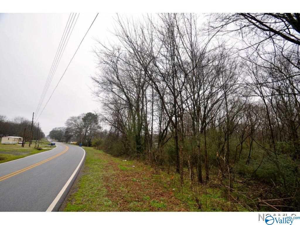 Photo of home for sale at 0 Lee Street, Blountsville AL