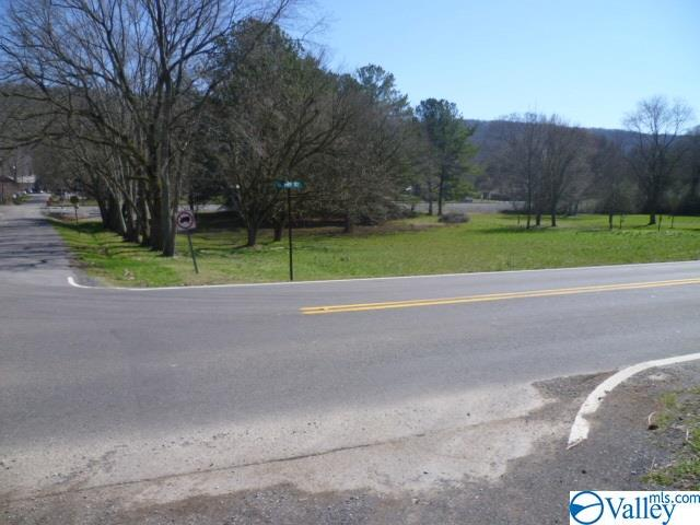 Photo of home for sale at 000 Highway 117, Valley Head AL