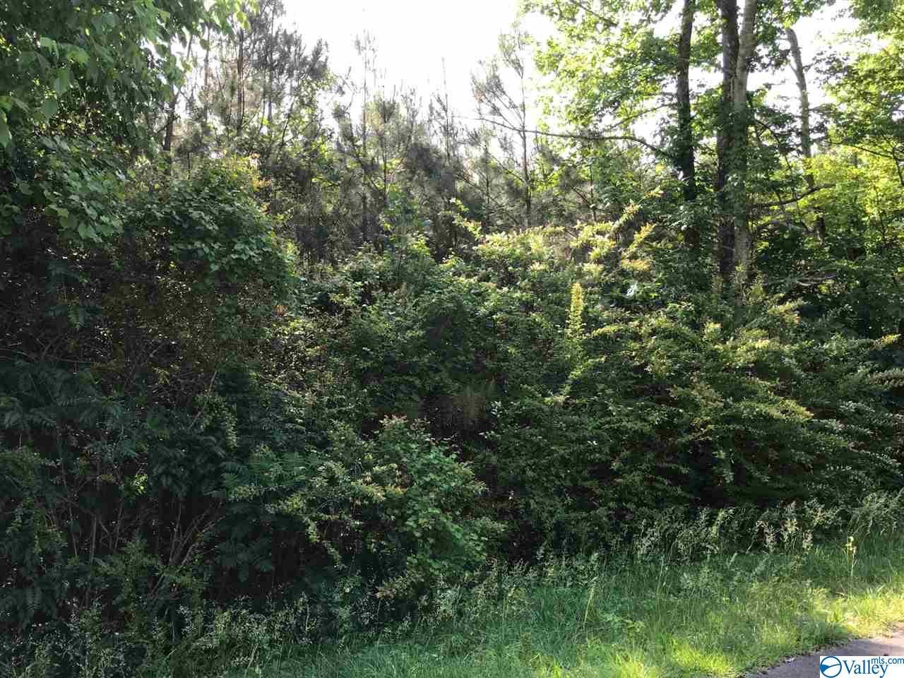 Photo of home for sale at Dalewood Lane, Guntersville AL