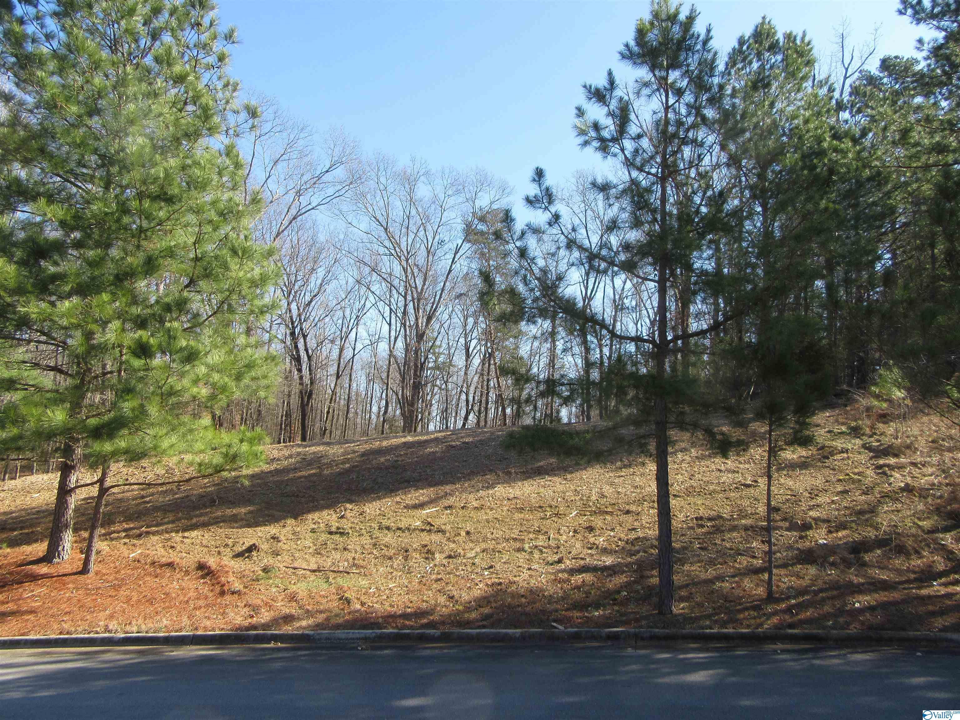 Photo of home for sale at 3506 Chula Vista Ridge Drive, Decatur AL