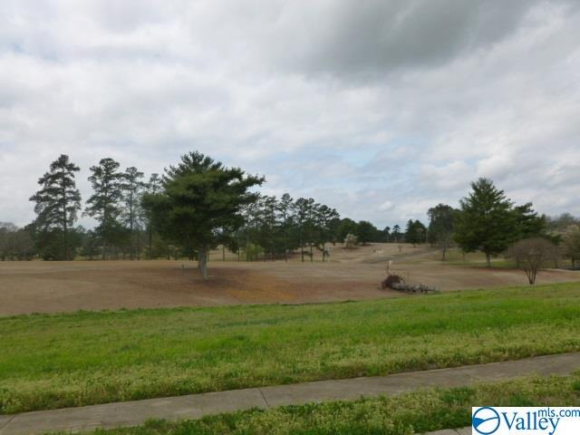 Photo of home for sale at Lot 4 Muirfield Drive, Albertville AL