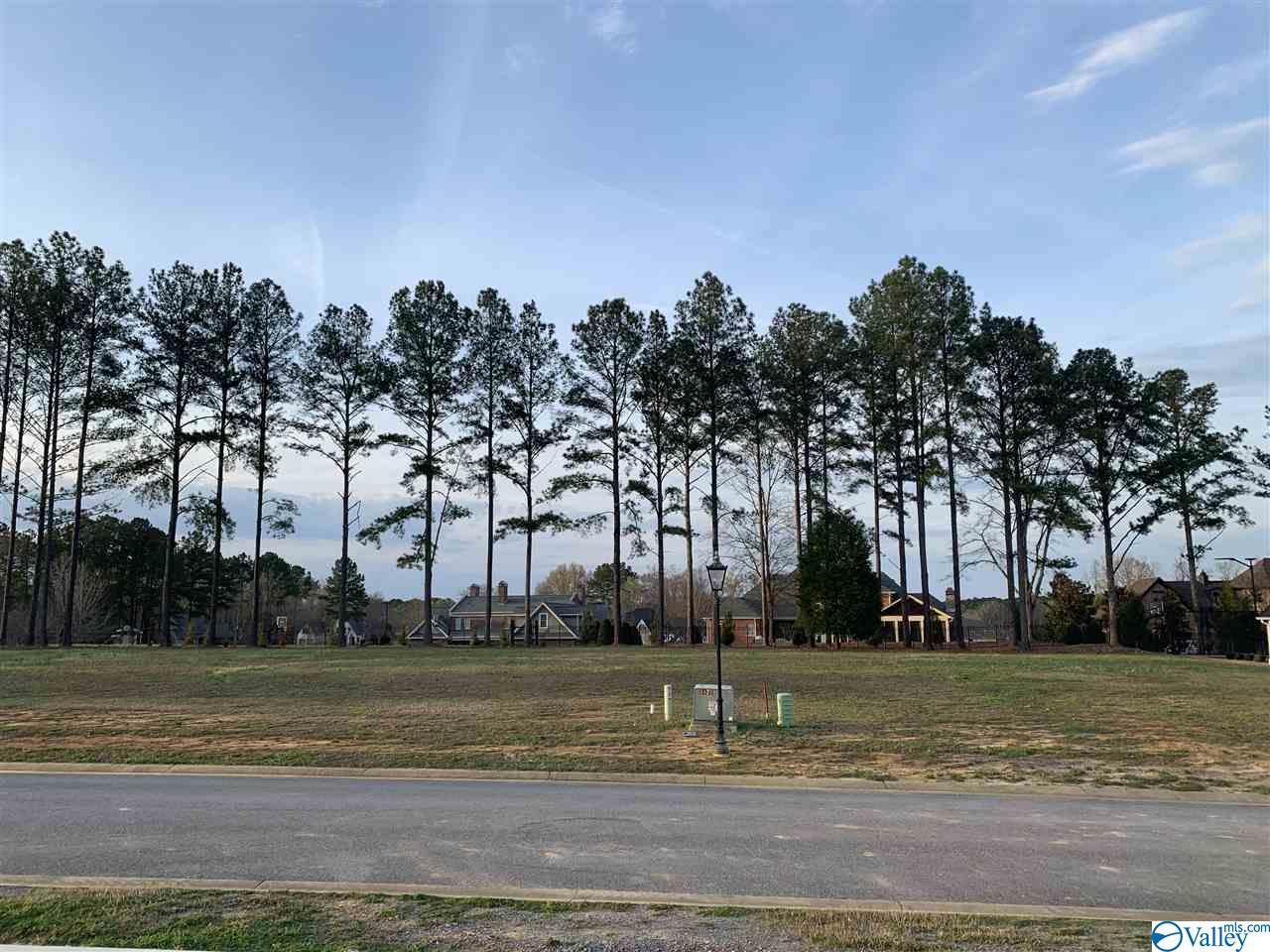 Photo of home for sale at 471 Copper Leaf Walk, Gadsden AL