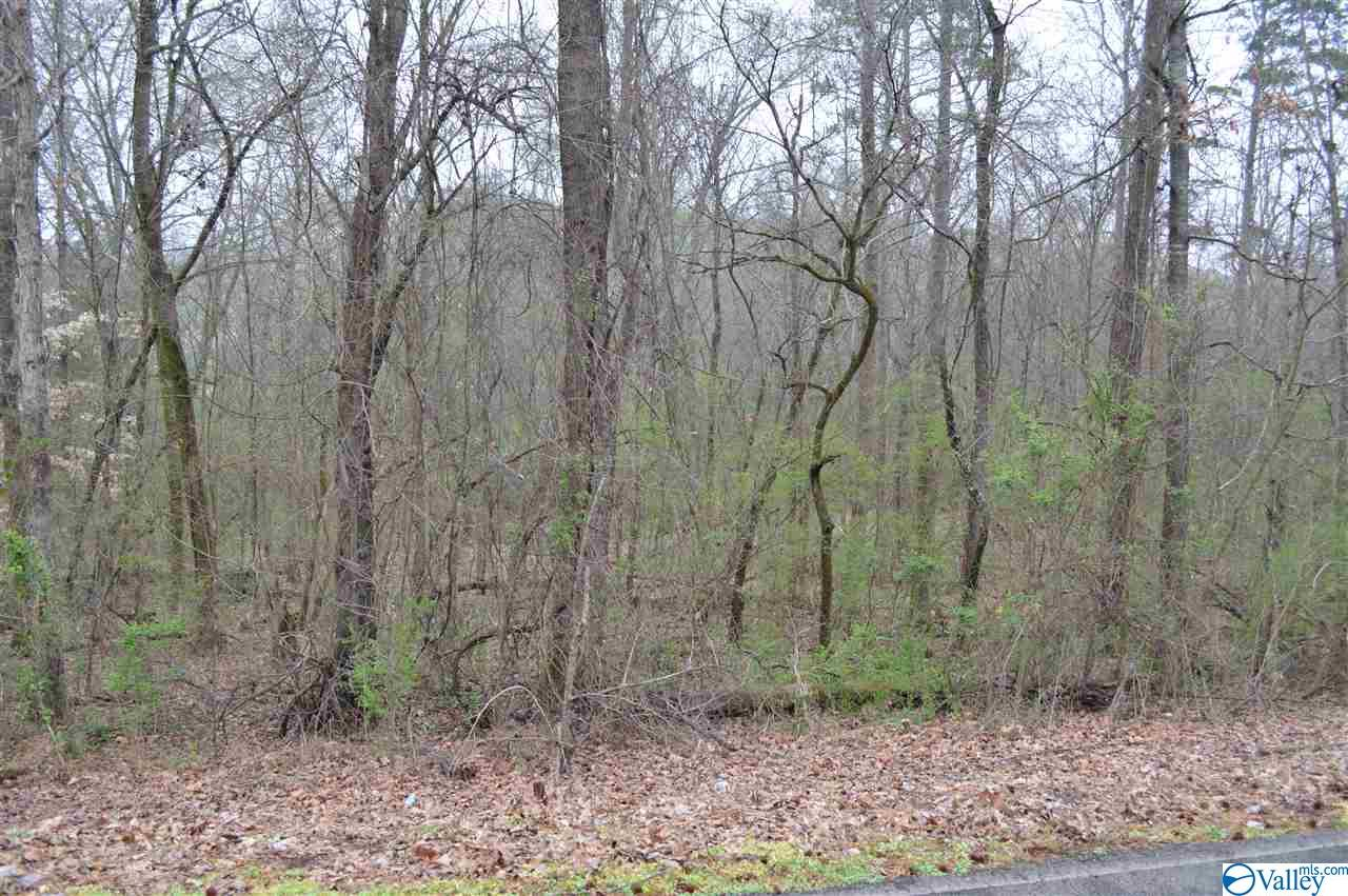Photo of home for sale at 283 York Drive, Rogersville AL