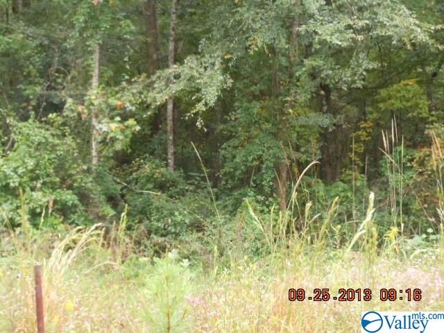 Photo of home for sale at Township Road, Rainbow City AL