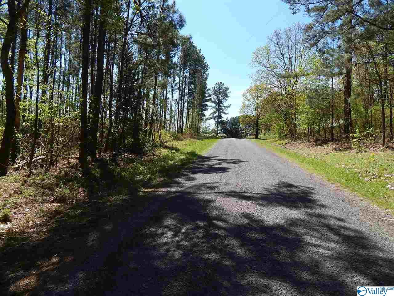 Photo of home for sale at Mount Carmel Drive, Guntersville AL