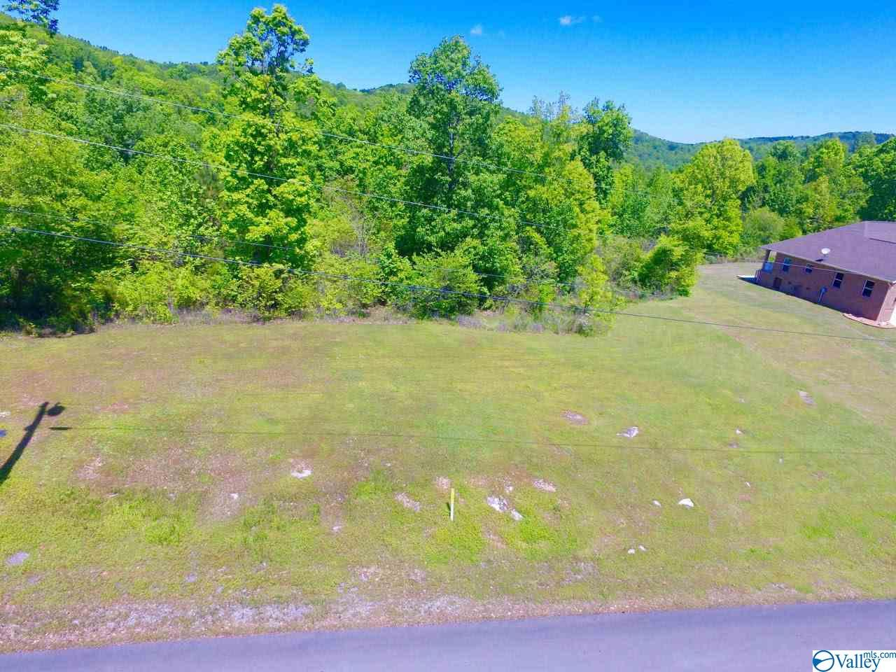 Photo of home for sale at 36 Tara Drive, Guntersville AL