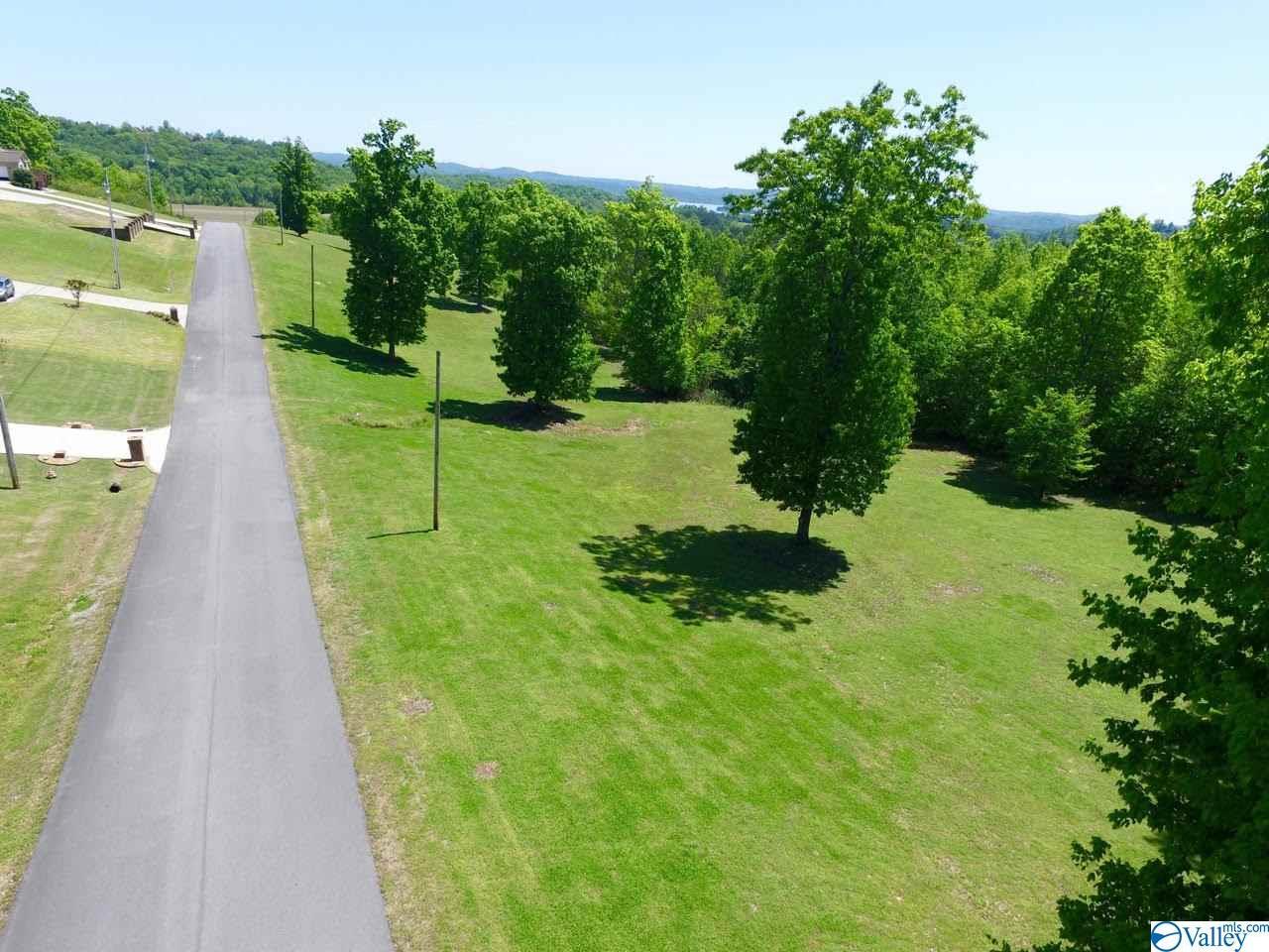 Photo of home for sale at 45 Tara Drive, Guntersville AL