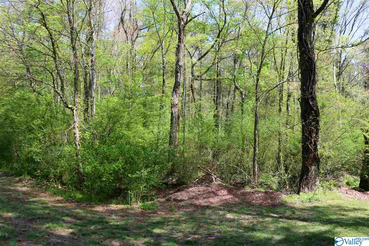 Photo of home for sale at 00 Arad Thompson Road, Arab AL