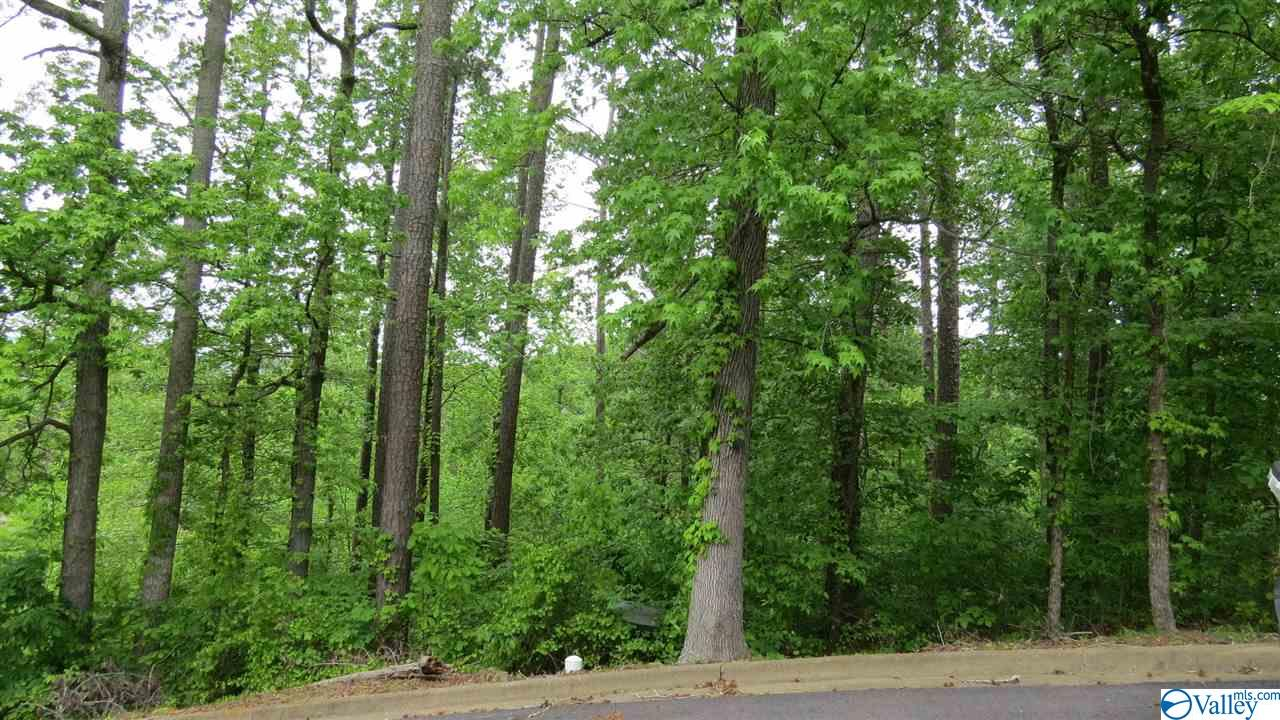 Photo of home for sale at 64 Heritage Drive, Guntersville AL